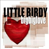 Little Birdy - Bigbiglove