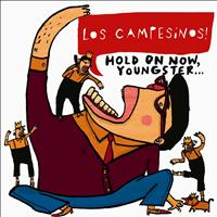 Los Campesinos! - Hold On Now, Youngster... (Explicit)