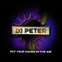 DJ Peter Project - Put Your Hands in the Air