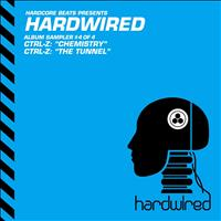 Ctrl-Z - Hardwired Album Sampler 4