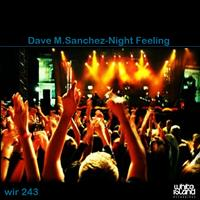Dave M.Sanchez - Night Feeling