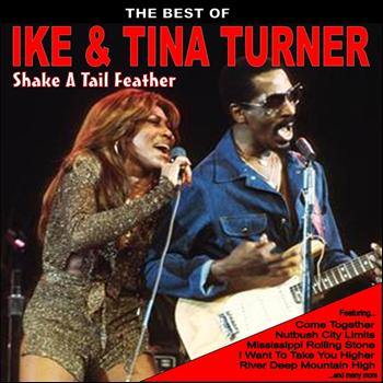 Ike And Tina Turner - Shake a Tail Feather: The Best of Ike and Tina Turner