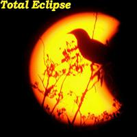 Eric Johnson - Total Eclipse