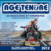 Various Artists - Age tendre... La tournée des idoles, Vol. 7