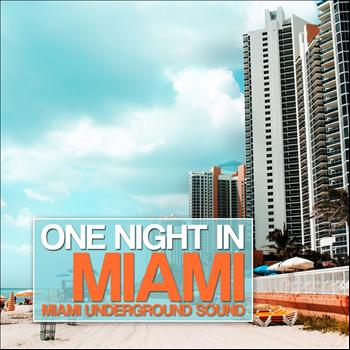 Various Artists - One Night in Miami (Miami Underground Sound)