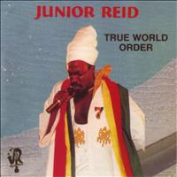 Junior Reid - True World Order