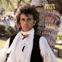 David Essex - Friends