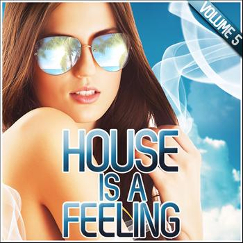Various Artists - House Is a Feeling, Vol. 5