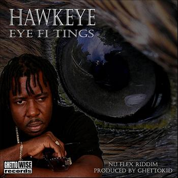 Hawkeye - Eye Fi Tings