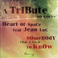Heart Of Space - Somebody That I Used to Know: A Tribute to Gotye