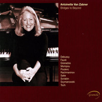 Antoinette van Zabner - Bridges to Beyond