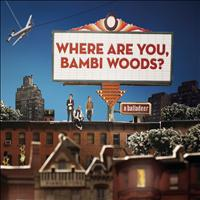 A Balladeer - Where Are You, Bambi Woods?