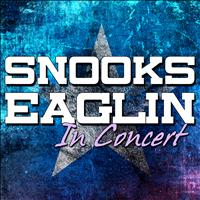 Snooks Eaglin - Snooks Eaglin in Concert