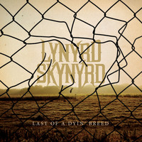 Lynyrd Skynyrd - Last of a Dyin' Breed