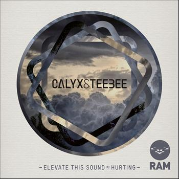 Calyx & Teebee - Elevate This Sound / Hurting