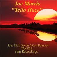 JOE MORRIS - Yello Haze