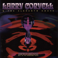 Larry Coryell - Improvisations - Best of the Vanguard Years
