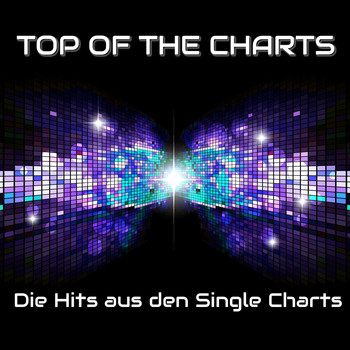 Various Artists - Top of the Charts - Die Hits aus den Single Charts