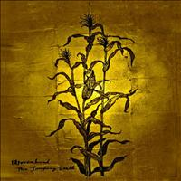 Wovenhand - The Laughing Stalk