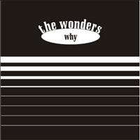 The Wonders - Why