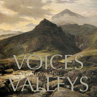 TREORCHY MALE VOICE CHOIR - Voices From The Valleys