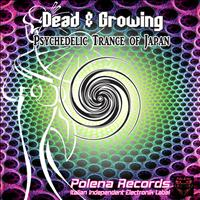 Dead And Growing - Psychedelic Trance of Japan