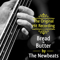 The Newbeats - The Original Hit Recording - Bread and Butter