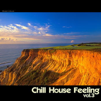 Various Artists - Chill House Feeling, Vol. 3
