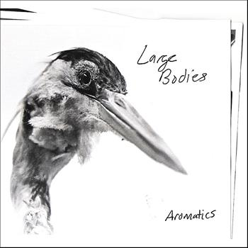 Large Bodies - Aromatics