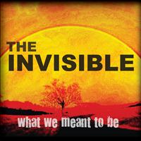 The Invisible - What We Meant To Be
