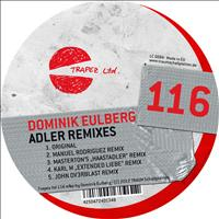 Dominik Eulberg - Adler Remixes