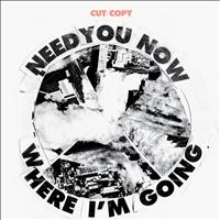 Cut Copy - Need You Now/Where I'm Going