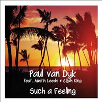 Paul Van Dyk - Such A Feeling