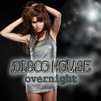 Various Artists - Disco House Overnight