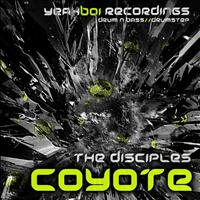 The Disciples - Coyote