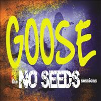Goose - The No Seeds Sessions