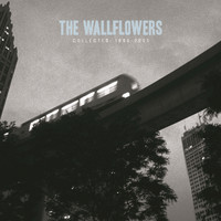 The Wallflowers - Collected: 1996-2005