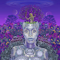 Erykah Badu - New Amerykah Part Two: Return Of The Ankh