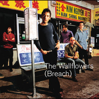 The Wallflowers - Breach (Edited Version)
