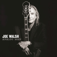 Joe Walsh - Analog Man