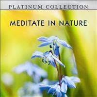 Platinum Collection Band - Meditate in Nature