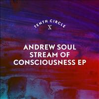 Andrew Soul - Stream of Consciousness EP
