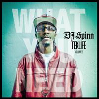 DJ Spinn - TEKLIFE Vol.2: What You Need (Explicit)