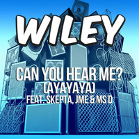 Wiley - Can You Hear Me? (ft. Skepta, JME & Ms D)
