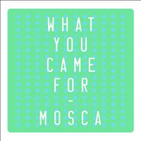 Mosca - What You Came For - Single