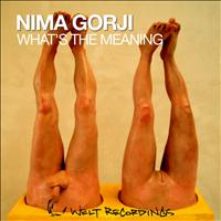 Nima Gorji - What's the Meaning