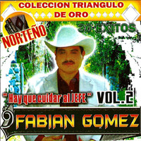 Fabian Gomez - 30 Exitos Vol.2