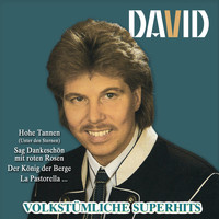 David - Volkstümliche Superhits