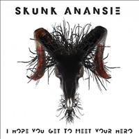 Skunk Anansie - I Hope You Get to Meet Your Hero