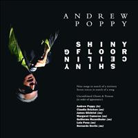 Andrew Poppy - Shiny Floor Shiny Ceiling (Explicit)